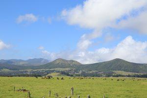 ハワイ島 パーカー牧場