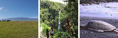 ハワイ島一周