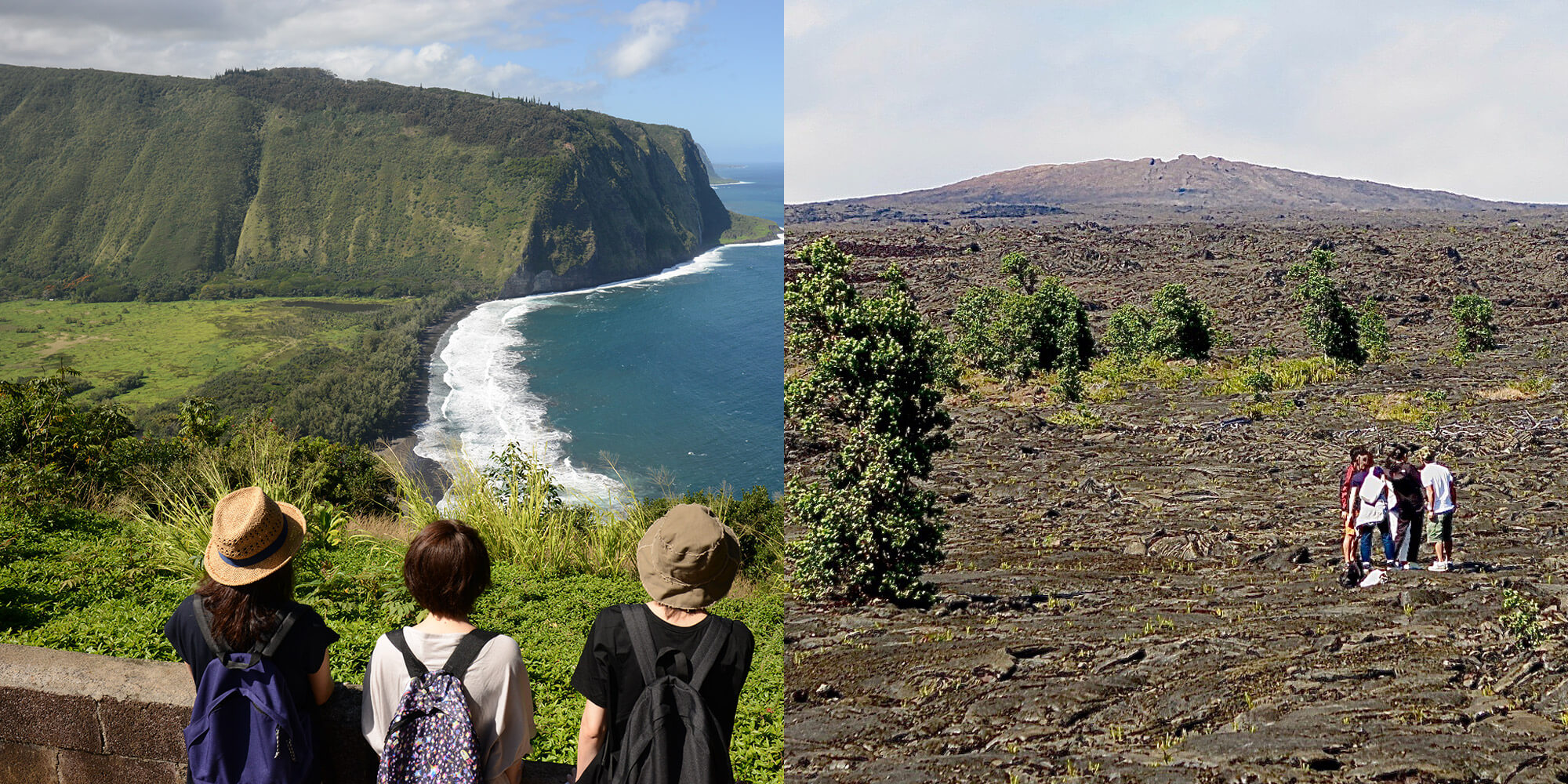 【北回り】ハワイ島・三大名所巡り&星空観測ツアー