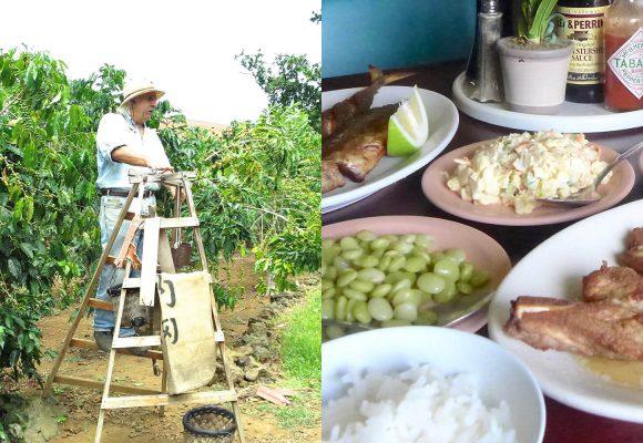 コナコーヒー農園とマナゴホテルの名物ランチ