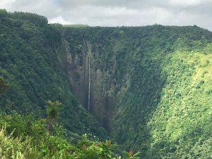 ワイピオ渓谷・癒しの森の絶景